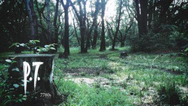 P.T. Silent Hills Demo teaser playthrough #1